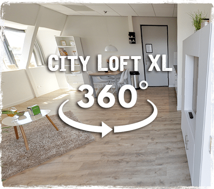CityLoftXL360-small2